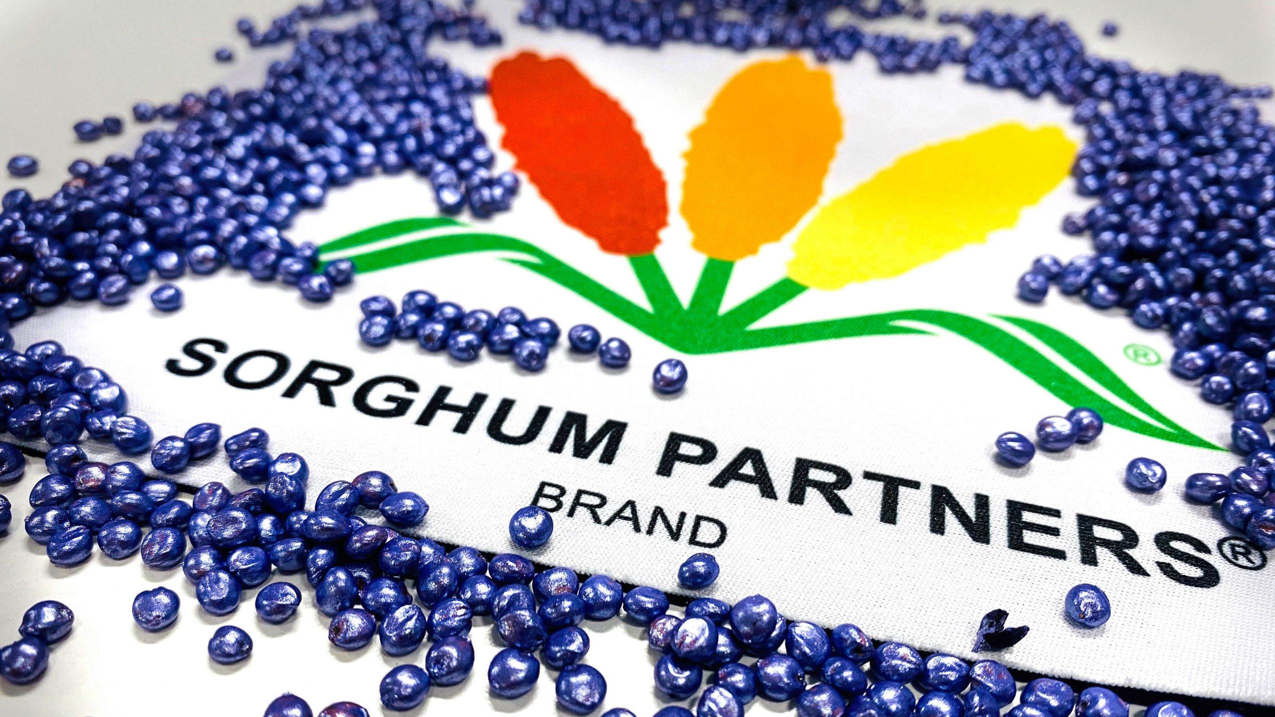 Sorghum seed treatment